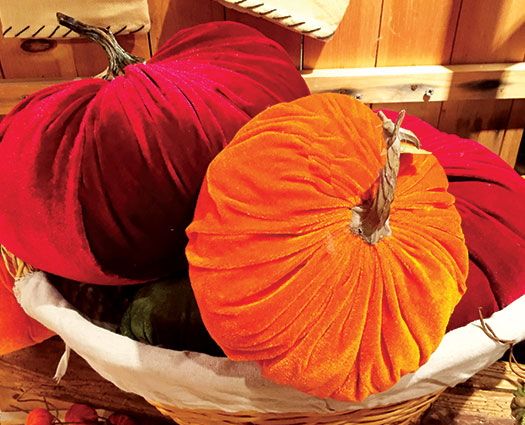 Thanksgiving velvet pumpkins