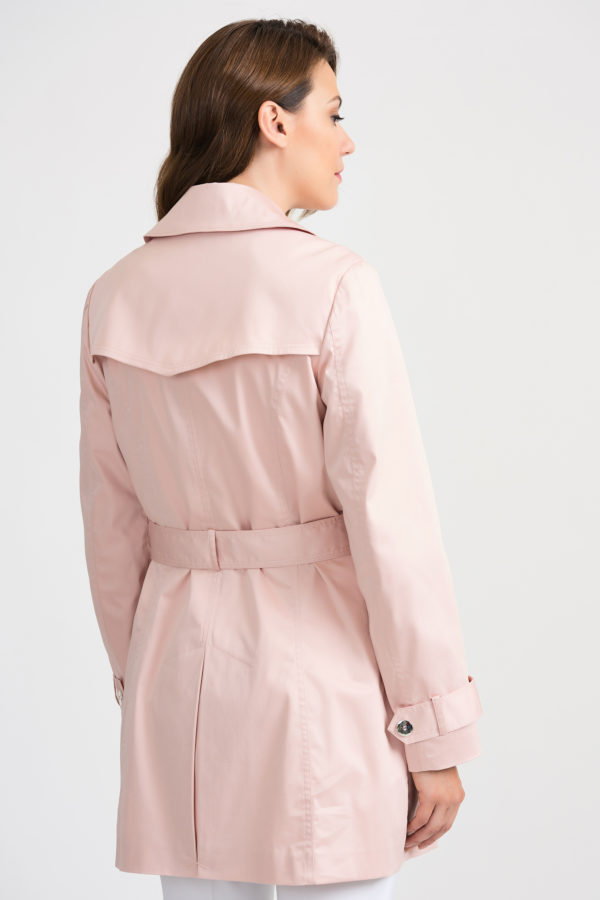 trench coat - back